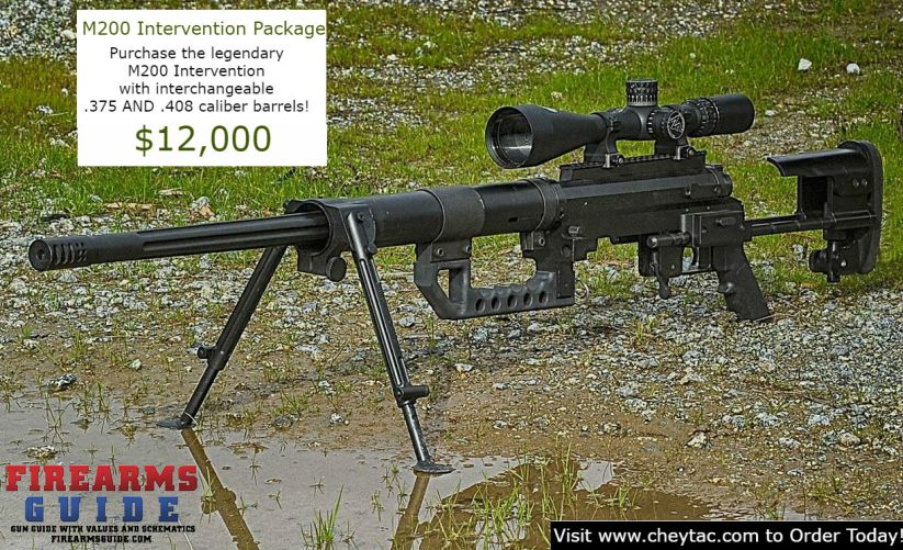 M200 Intervention Package Deal with interchangeable  375 and